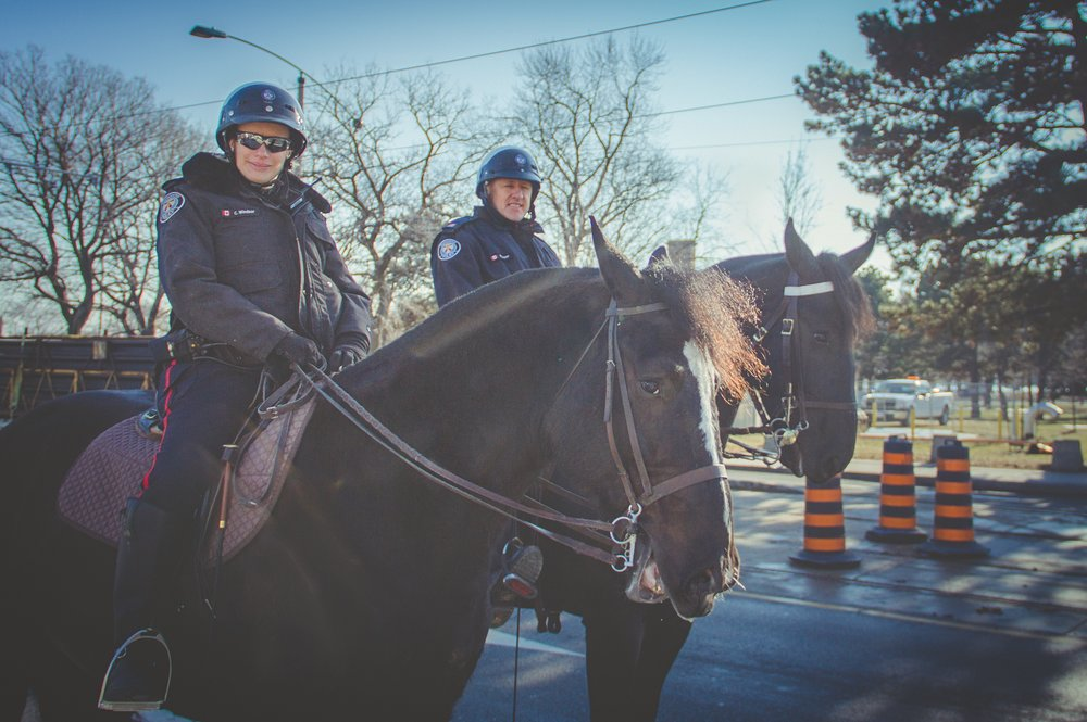 """It's strange. A lot of people don't seem to understand why law enforcement needs cavalry, but you never hear them complain about the lack of crusades we've had lately. Mounted police, or 'coltstables' as we sometimes call ourselves, are the main deterrent of steed-based crime. When was the last time you heard of a felony perpetrated on horseback? Probably what... a century ago? That's us. We're the reason you don't get lasso'd for your silver dollar on the way to the saloon, and we have a damn fine track record to prove it. Does that mean leaving behind a little excrement here and there as a warning to wrongdoers? Unfortunately yes. But would you rather the bandits feel safe or the fine people of The 6, cause all boroughs considered, this town still ain't big enough for the both of us."""