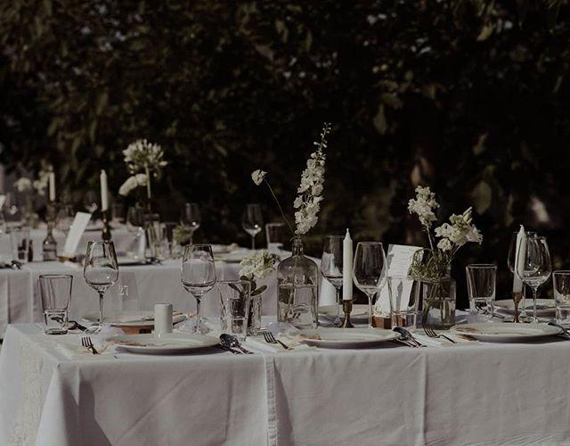 Summer table 😍  Photo: Orsi  #weddingphoto #weddingflowersdecor #naturalwedding #mood #weddingdecor #weddingstyling #barefootweddingstyle #barefootteam #weddinginthenature #flowers #weddingseason  #balatonwedding #mik #ikozosseg #tellon #lookslikefilm #livefolk #whitemagazine #whitedecor #vscohun #vscomood #heyheyhellomay #greenweddingshoes #junebugweddings #dirtybootsandmessyhair #theweddinglegends #loveandwildhearts #lifeofadventure #adventurouswedding #intimatewedding
