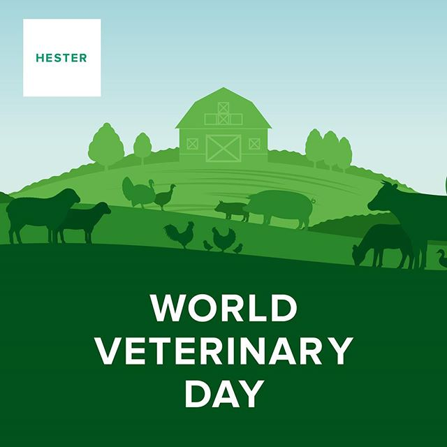 In the honour of the wonderful work carried out by the Veterinarians towards the betterment of Animal Health, we wish you all a Happy World Veterinary Day! #WVD2018