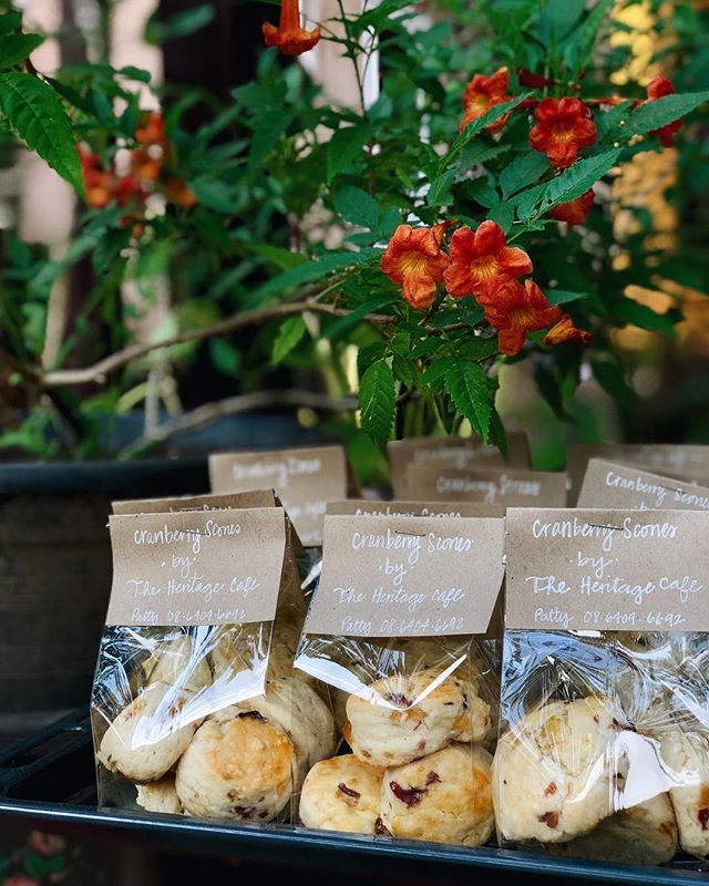 Our savory cranberry and white raisin scones make a wonderful present to friends or family or even as party favors for your special event. Whatever the reason, we're happy to bake and package them fresh for you during this season. Contact us for more details :)