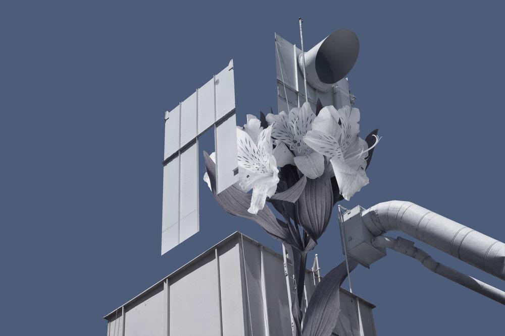 white_tower.jpg