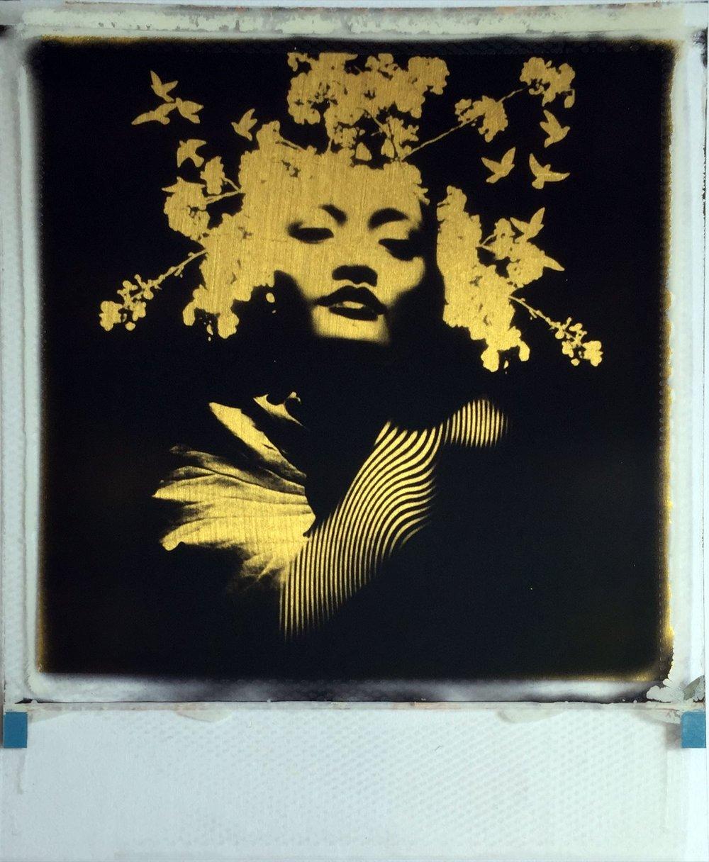 Andrew Millar @ Smithson Gallery