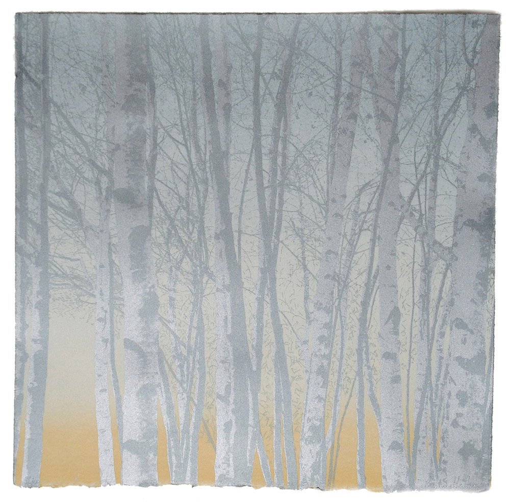 Silver Birches by Anna Harley