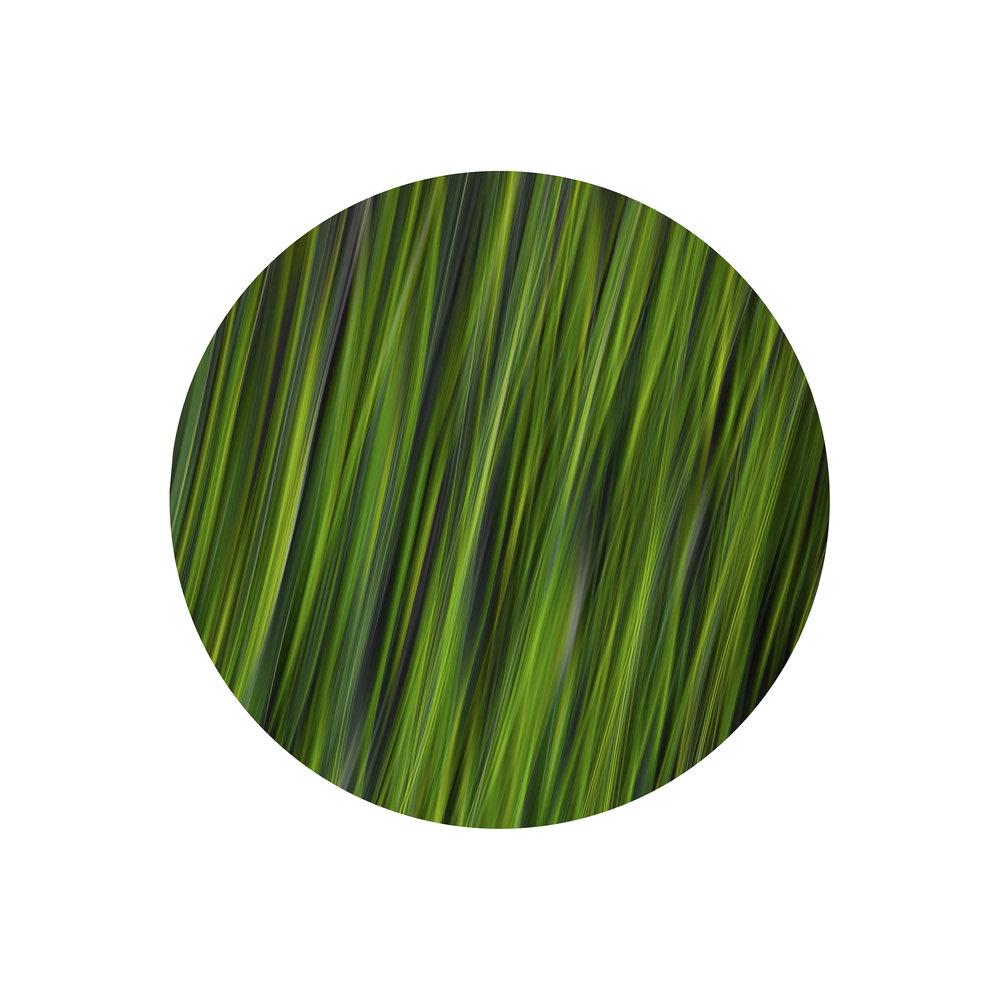 """Verde #0042,"" 2016. Ed 2/3"