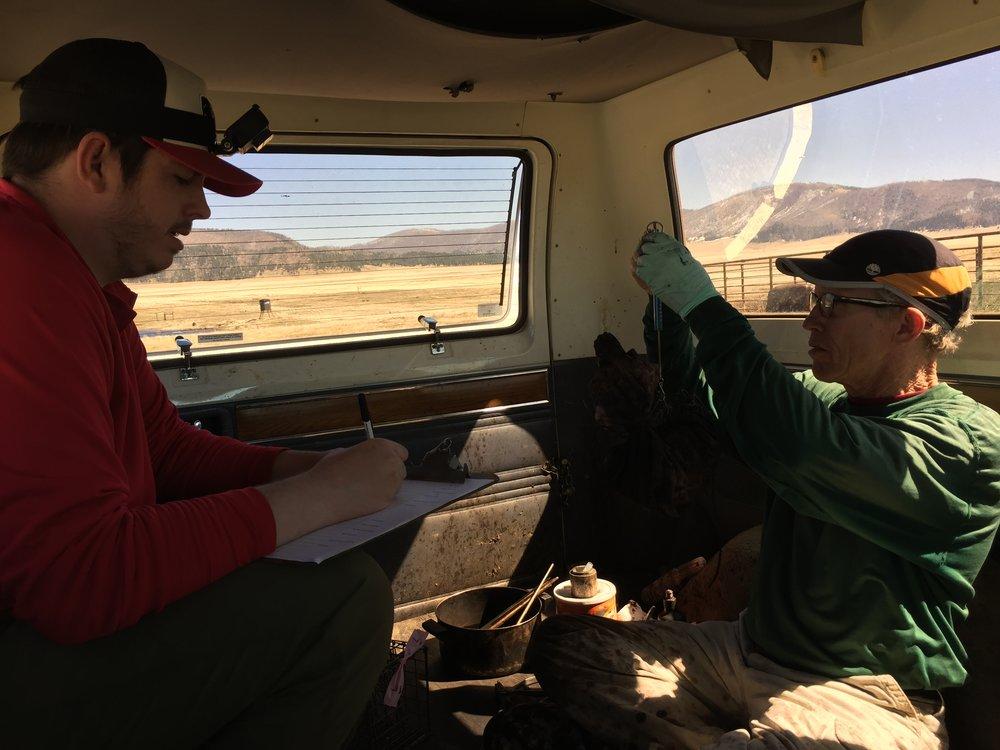 Helping John in the marking van.  ©MRR 2017
