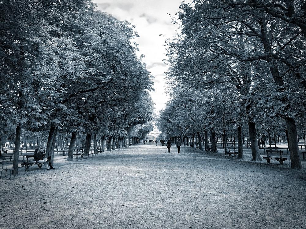 Promenade d'Automne silverlight.jpg