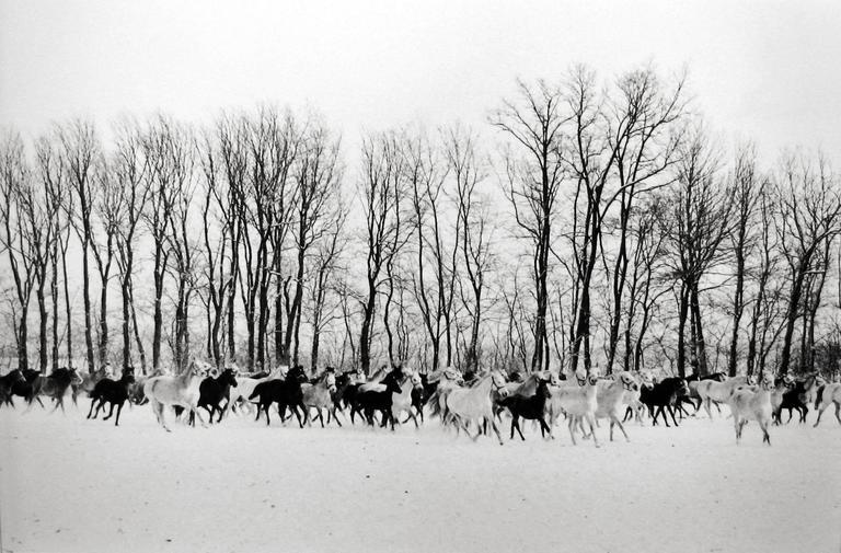 Henri Cartier-Bresson,Gyor, Hungary, 1964