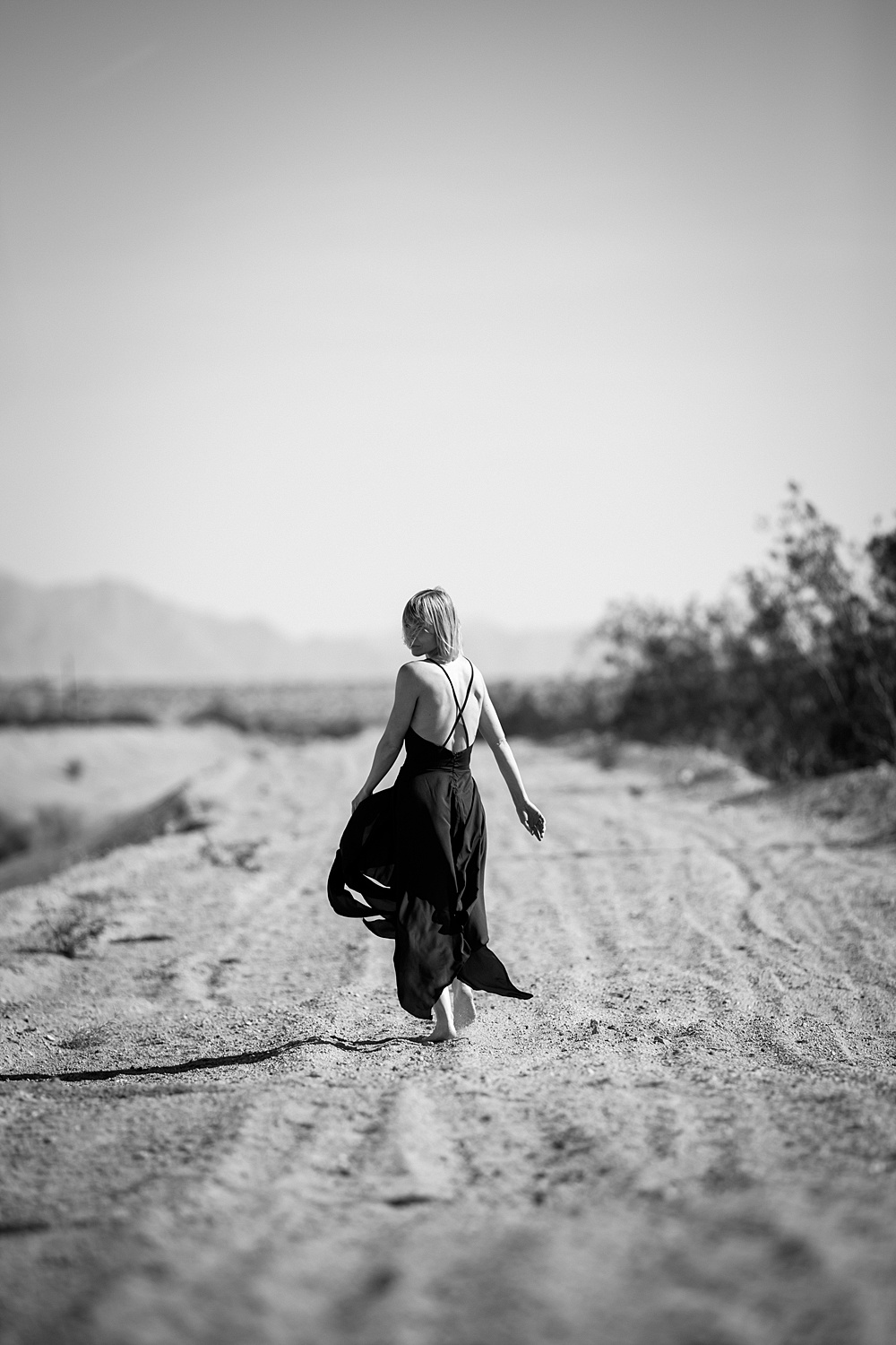 midday photography, joshua tree photographer