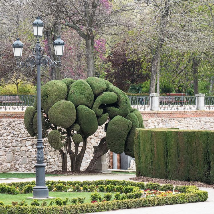 Spain-6.jpg