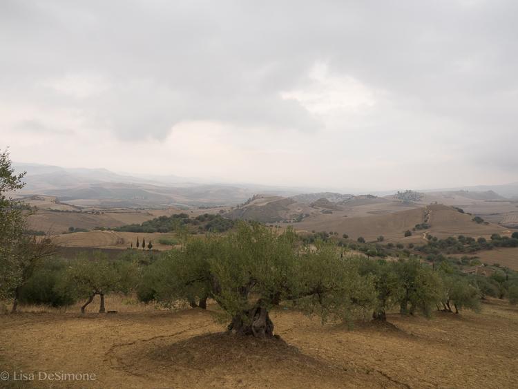 Sicily Sept 27-4.jpg