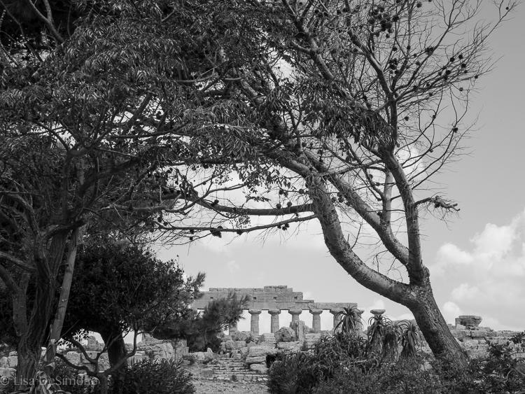 Sicily Sept 30 Selinunte-17.jpg