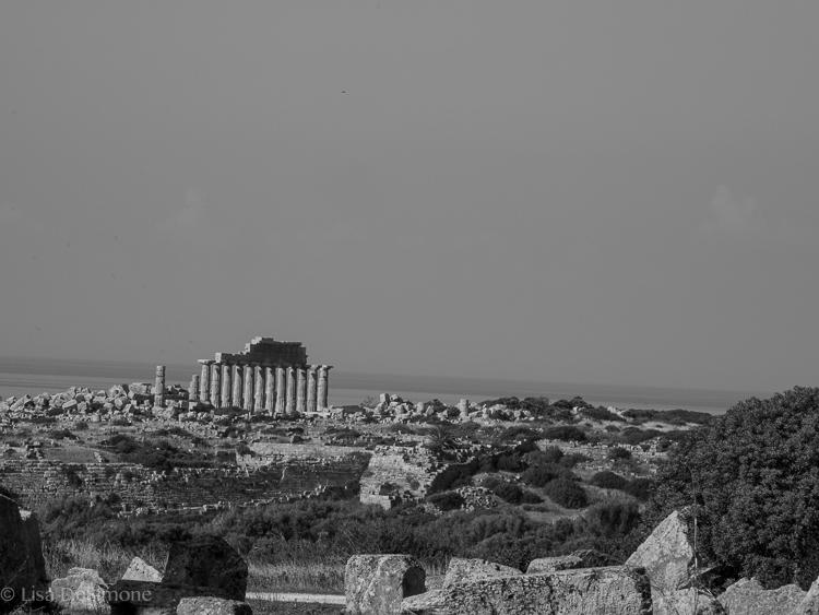Sicily Sept 30 Selinunte-5.jpg