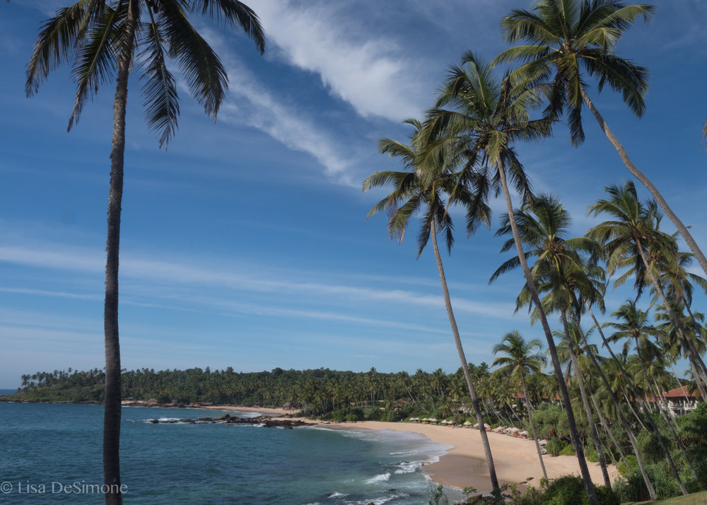 The beautiful and uncrowded beaches of Tangalle