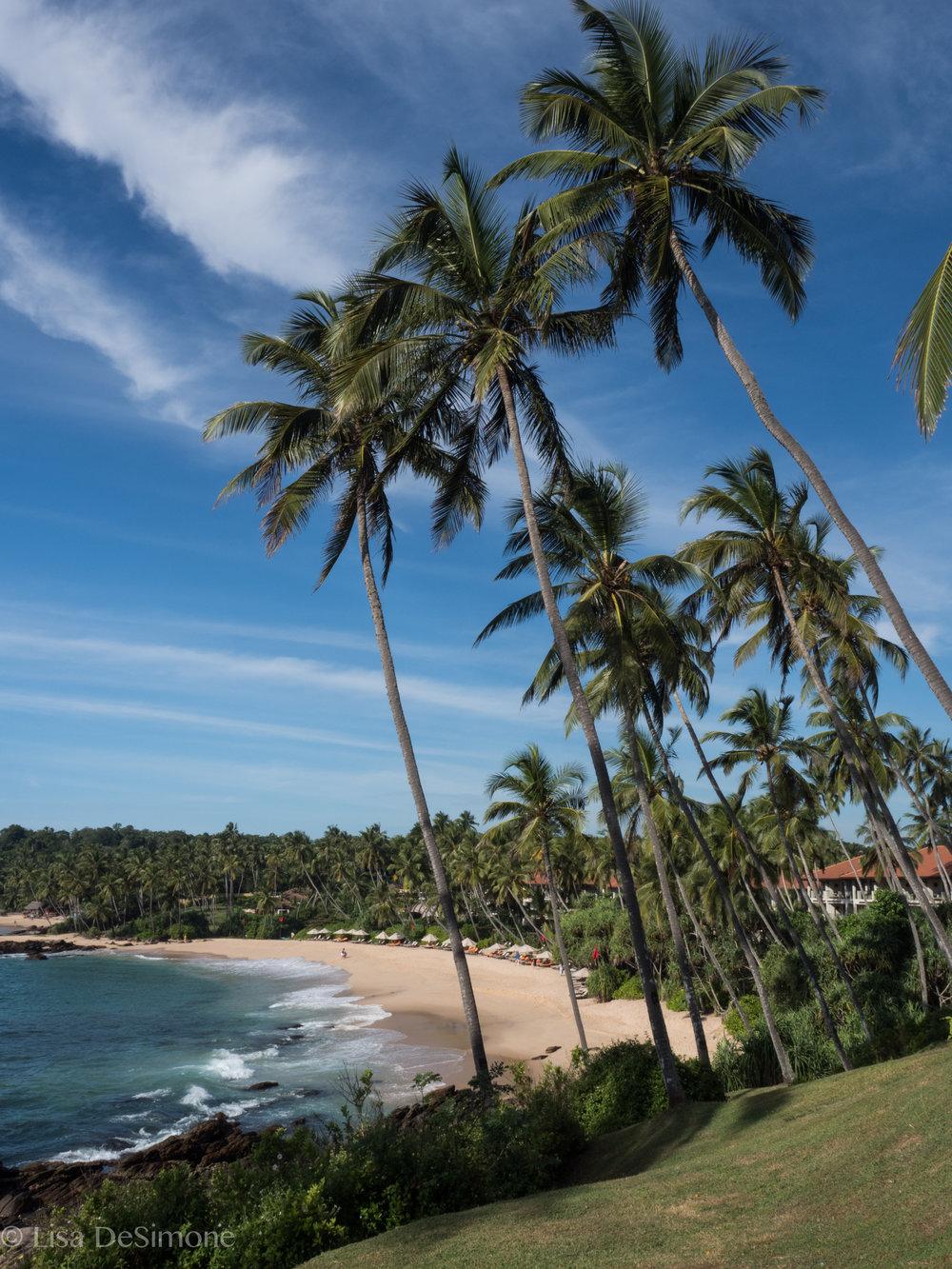 Sri Lanka exports-41.jpg