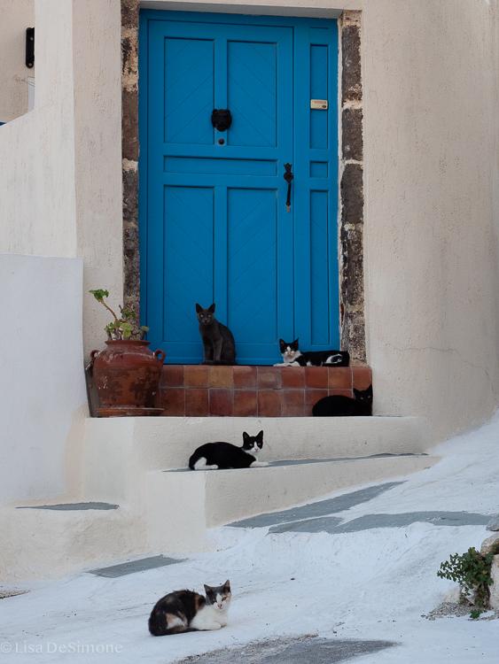 Greece-91.jpg