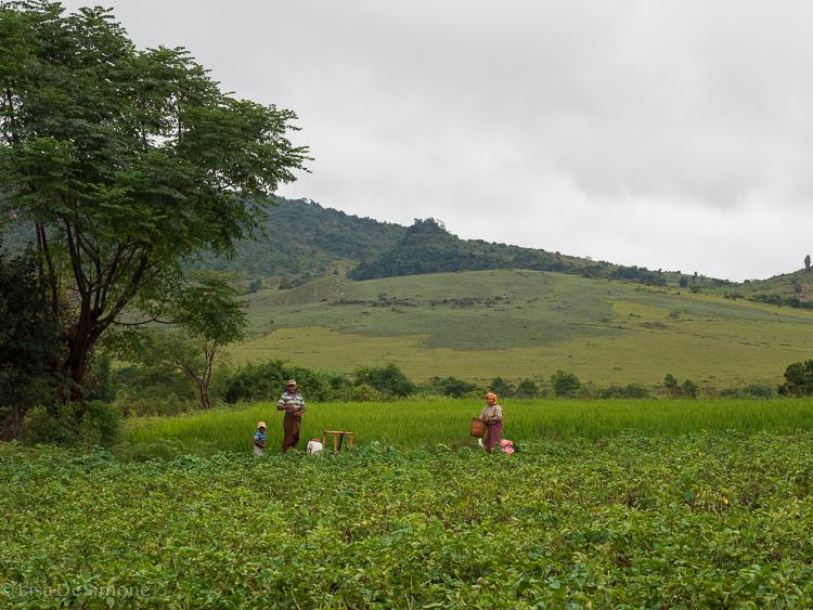 Myanmar blog-73.jpg
