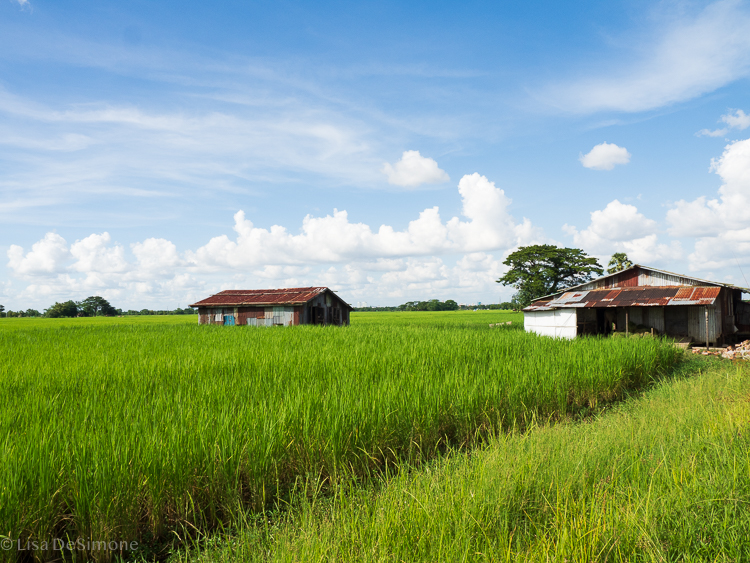 Myanmar blog-24.jpg