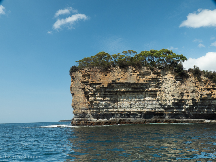 View from the boat cruise as we head to the start of the Three Capes Track