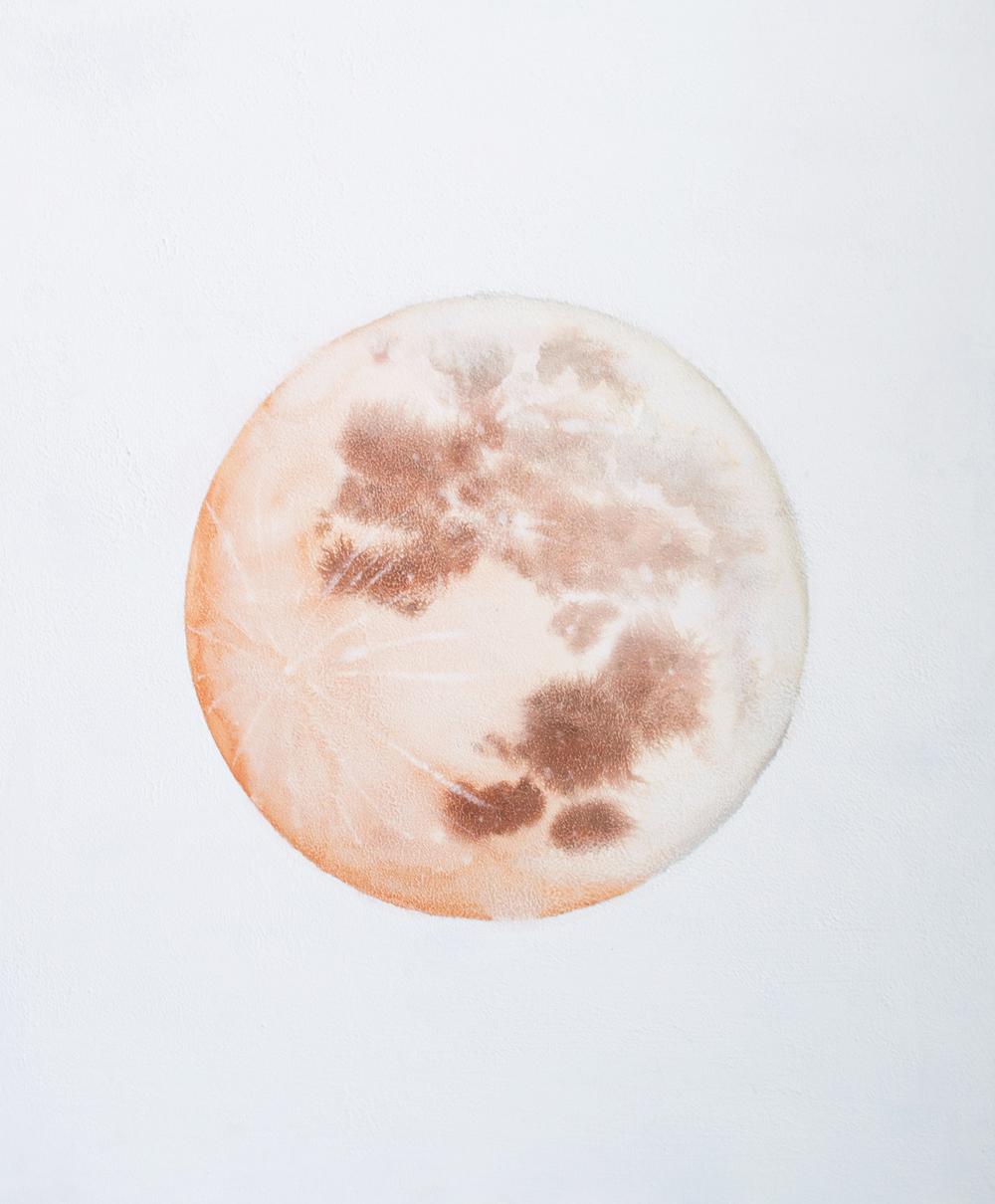 Selenelion+Moon+(1+of+1).jpg