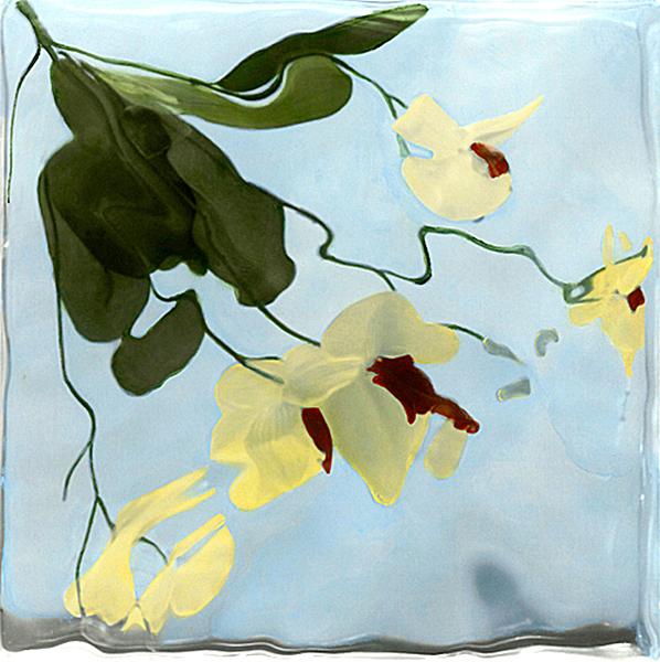 """Orchids"""