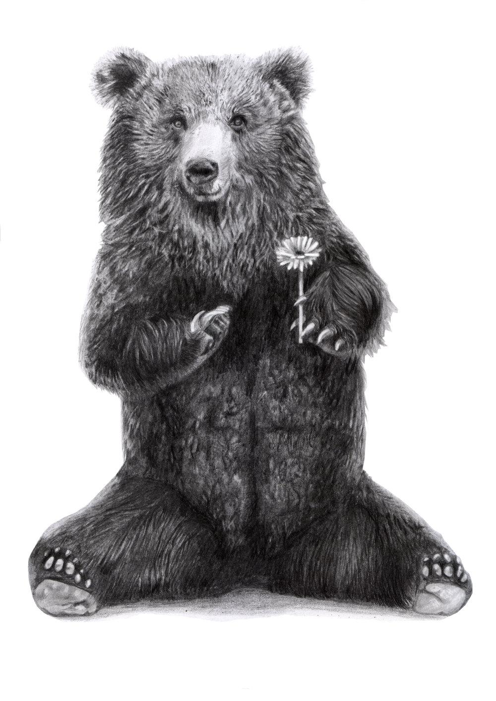 Bears have feelings too