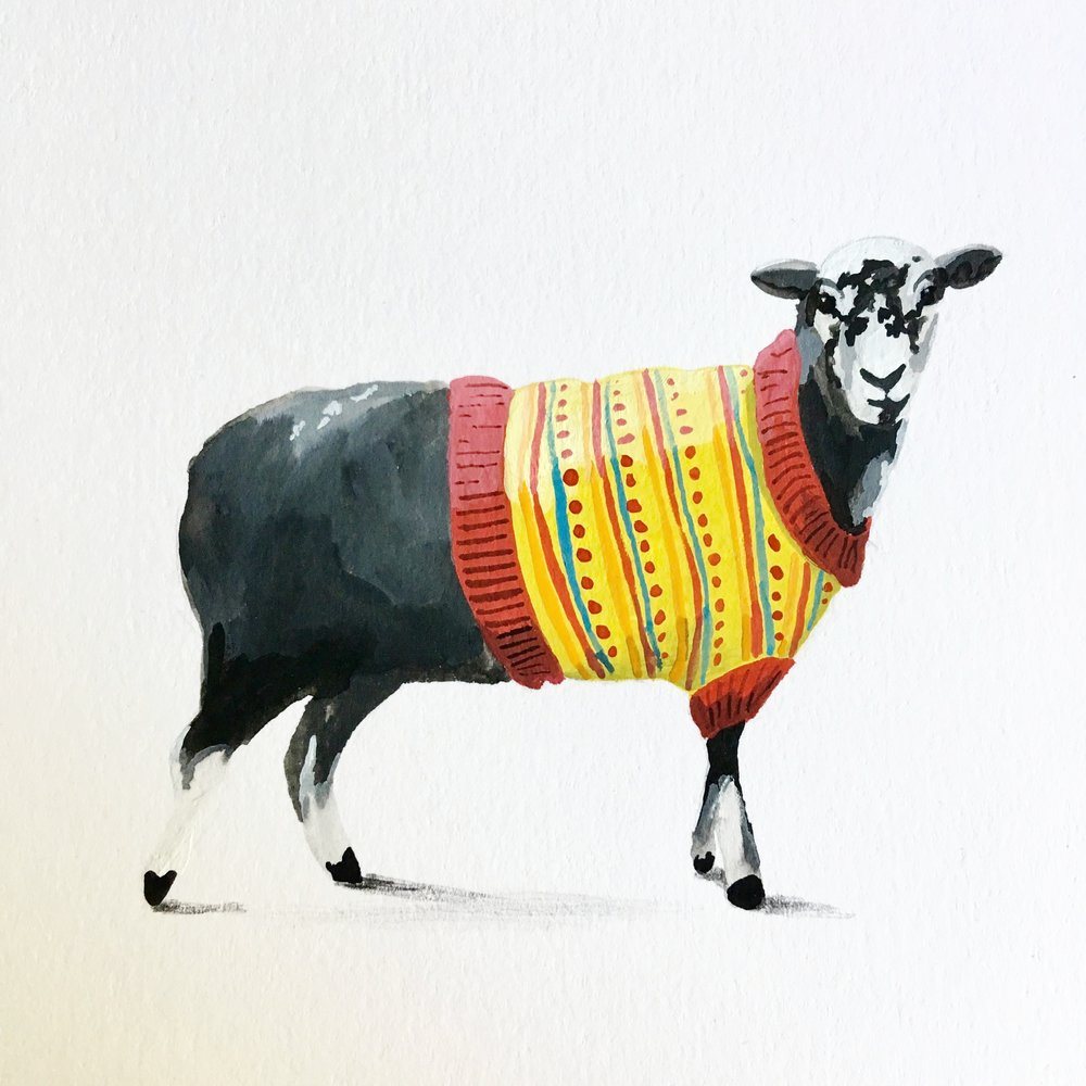 Woolly for Ewe