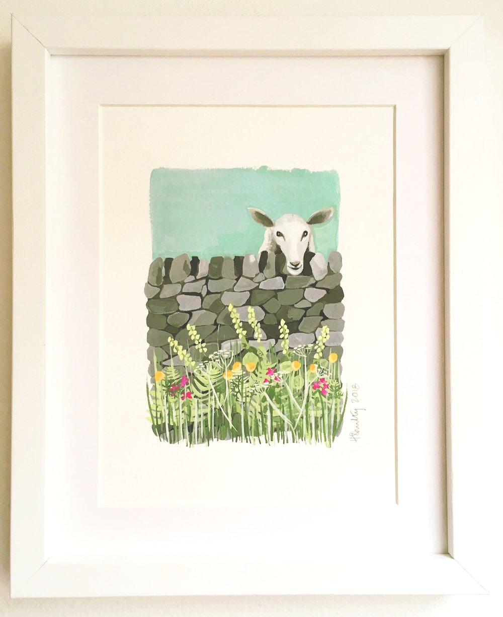 Sheep and a dry stone wall