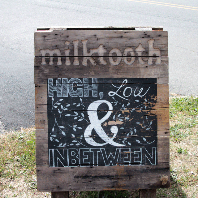 milktooth | Indianapolis