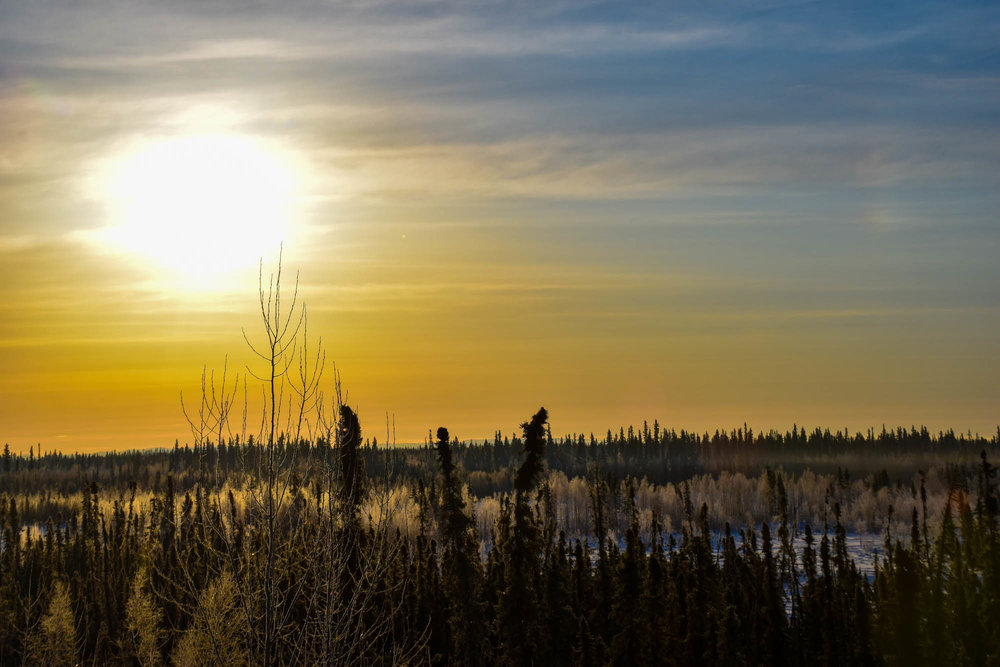 Fairbanks, Alaska by Jennifer Melroy of National Park Obsessed