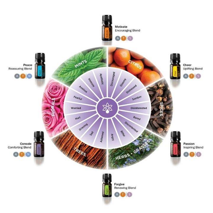 Emotion Oils, Emotional Aromatherapy, JennOldham.com