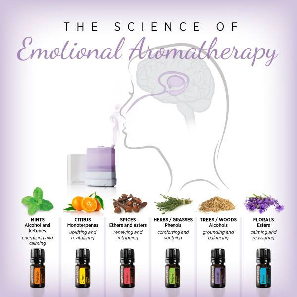 The Science Of Emotional Aromatherapy