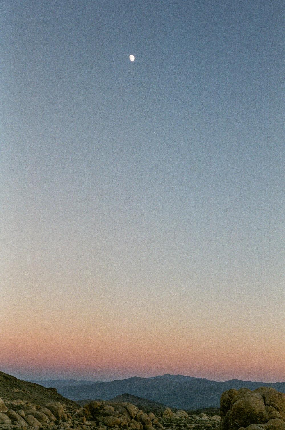 untitled-5.jpg