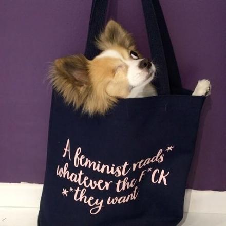 Maskottchen Spitz Fitz wirbt für Merchandising