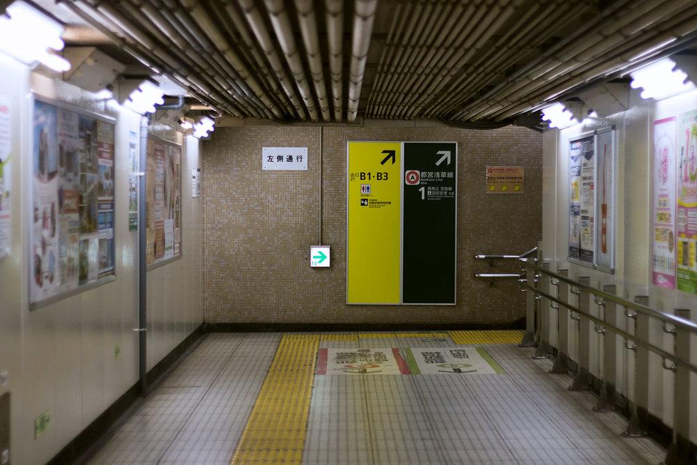 IMG_7972s.jpg