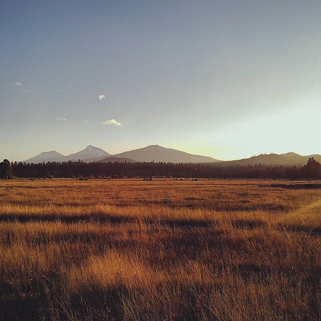 With fall is upon us, I only want to be one place. #centraloregon #tbt