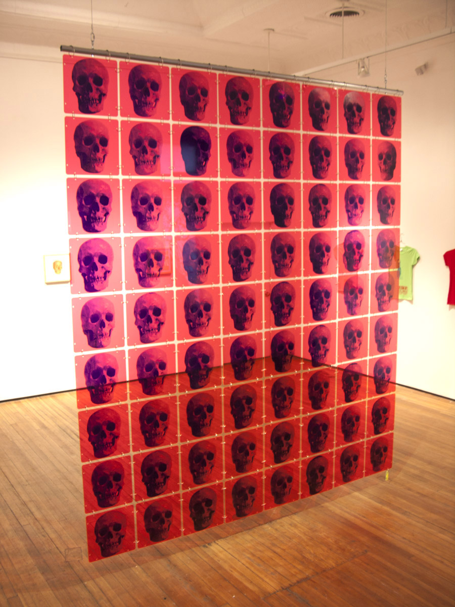 """ Skull Screen"" Christopher Henry Gallery NYC 2015"