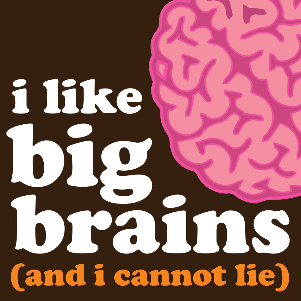 i like big brains and i cannot lie