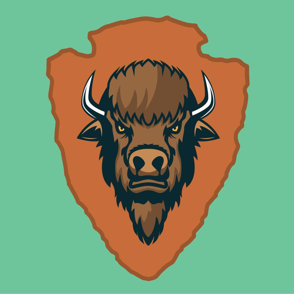 rogue-nps-bison