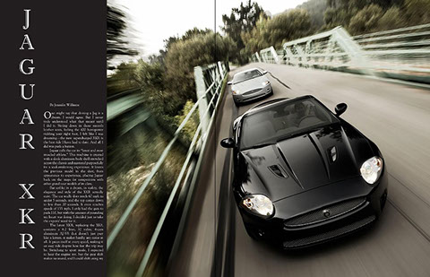 agm-jaguar1.jpg