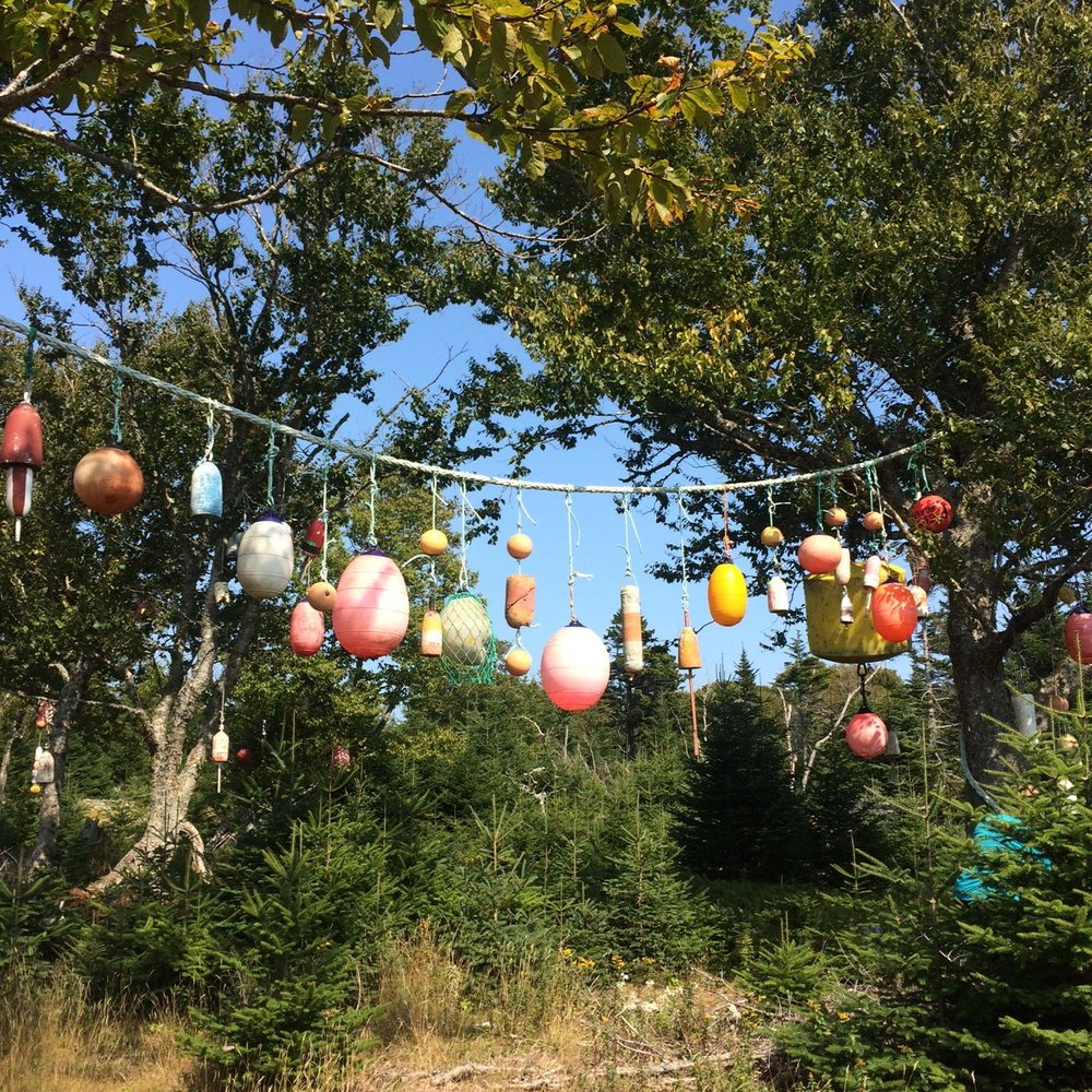 So magical.  One small piece of the Buoy trees!  Hundreds of pieces of nautical flotsam we strung up in the trees on a piece of private property the trail crosses.