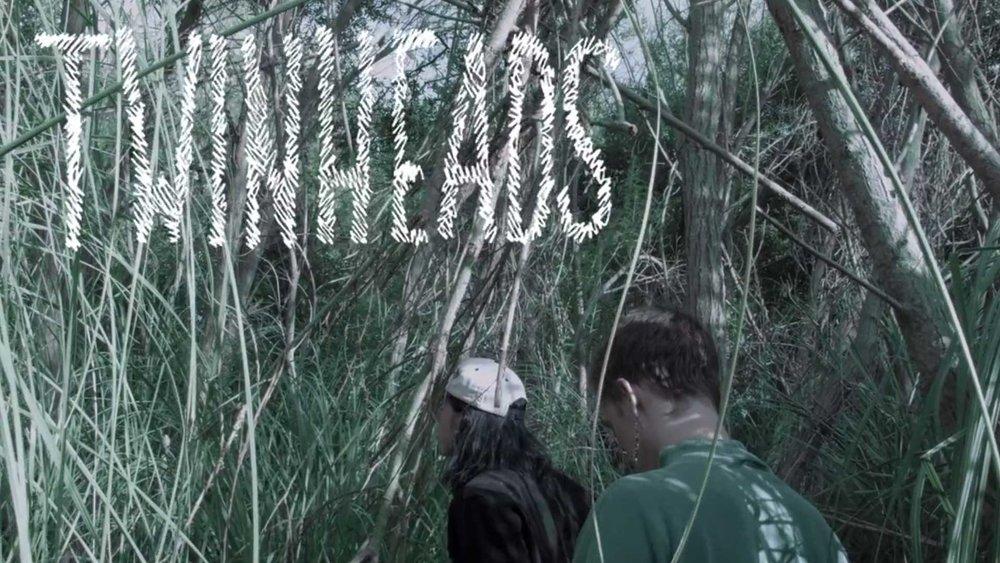 Twinheads