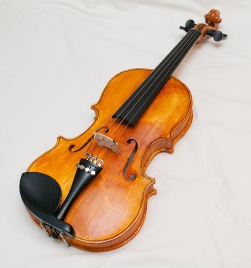 Violin I made.jpeg