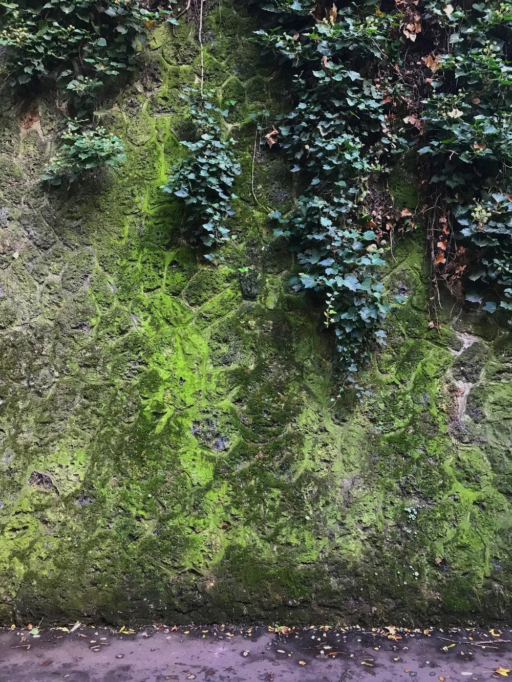 BAURAIN SS18 vegetation Paris