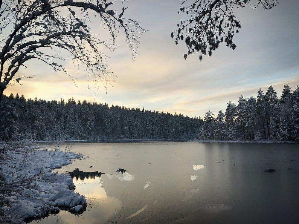 First Snow - November