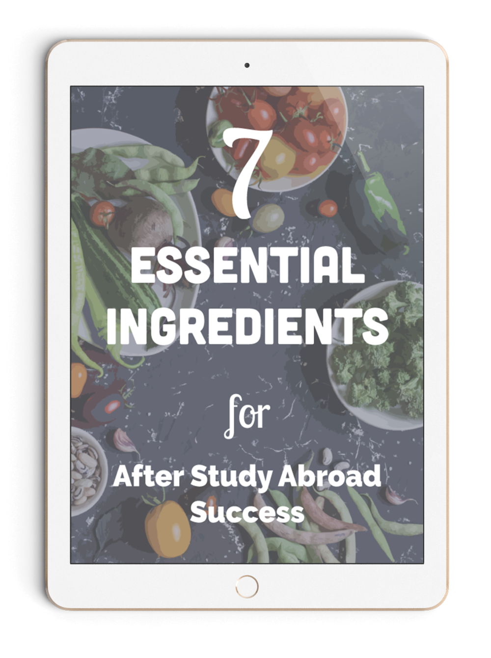 Free mini workbook. There are seven things you  must do after study abroad. This free workbook shows you those tasks and has fun exercises to help you with the first step.