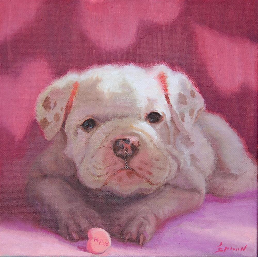 """Bull Dog Love 8""""x 8"""" oil on canvas"""
