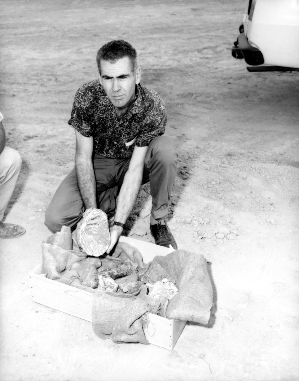 Leonard Bessom with Mammoth tooth, 1961.   Photograph by Frank Knight, courtesy of the Thousand Oaks Library.