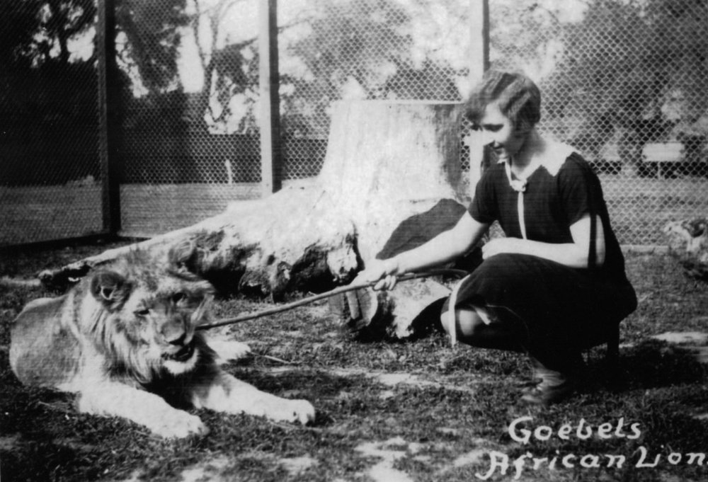 Kathleen Goebel about 1928, at  Goebel's African Lion Farm , later known as Jungleland