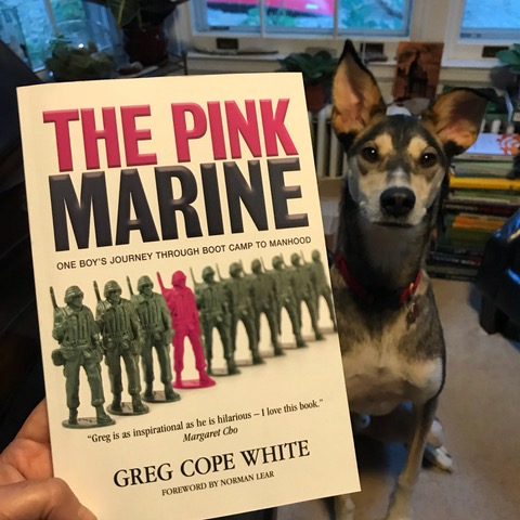 The Pink Marine: One Boy's Journey Through Boot Camp to Manhood by Greg Cope White with approval from Buddy Fitzwilliam Tholak.