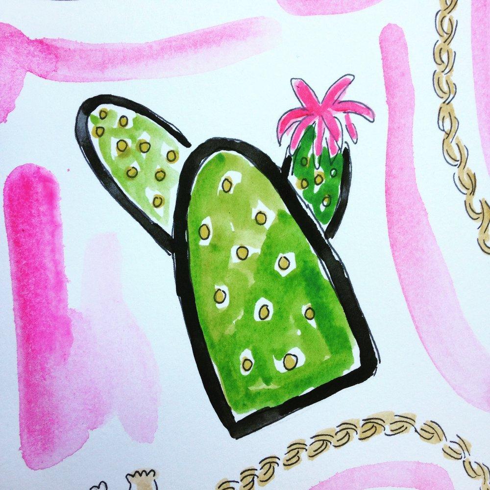 Wild We Cactus Patch